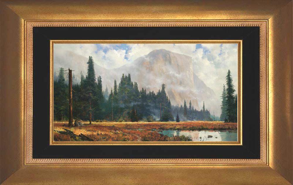 Yosemite Meadow - Aurora Gold