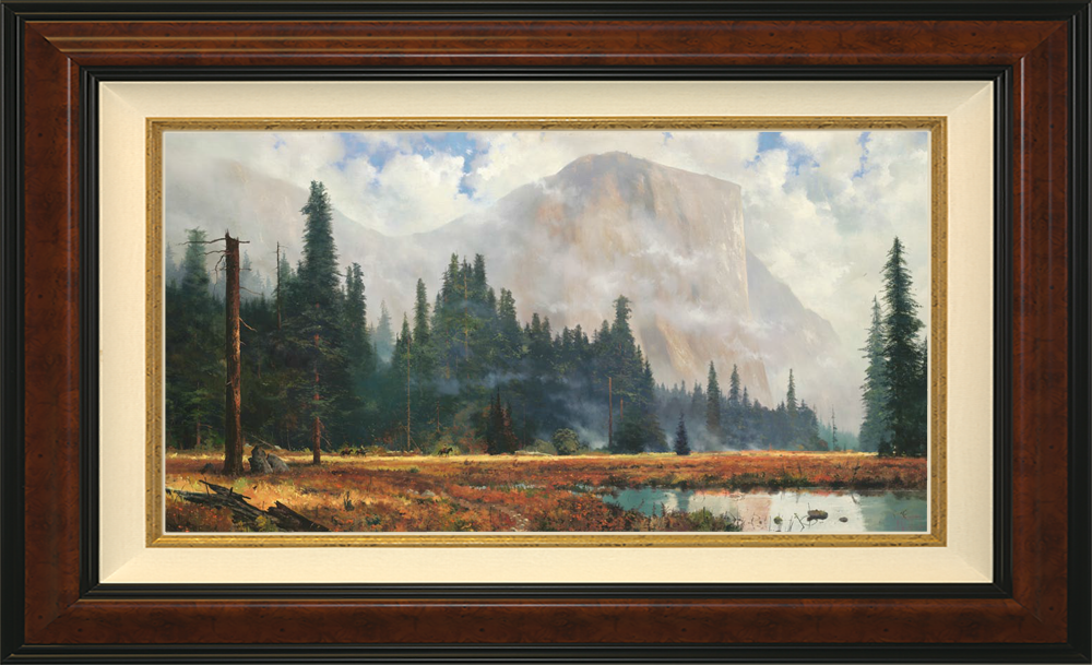 Yosemite Meadow - Burlwood