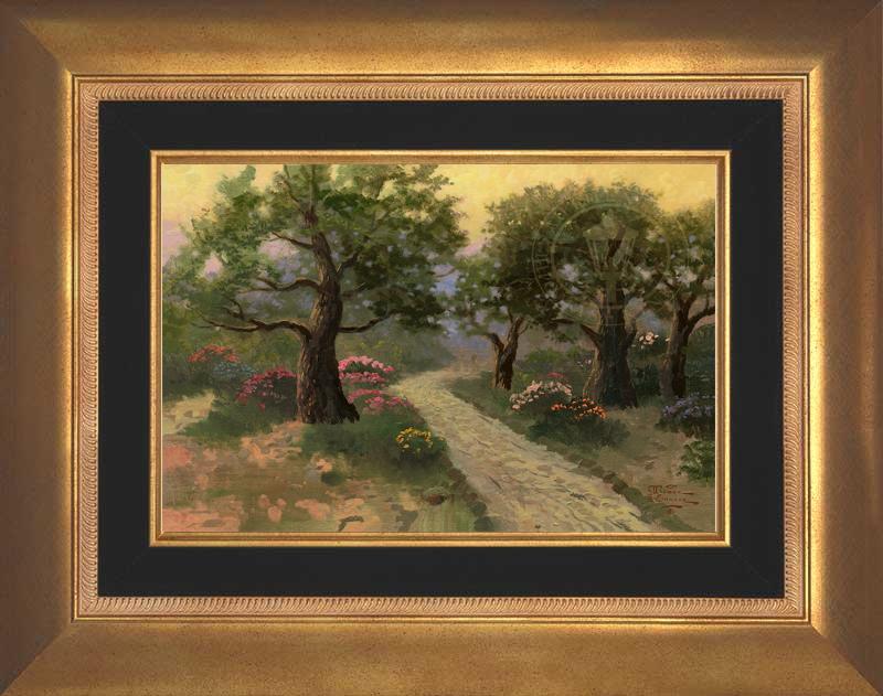 Garden of Gethsemane - Aurora Gold
